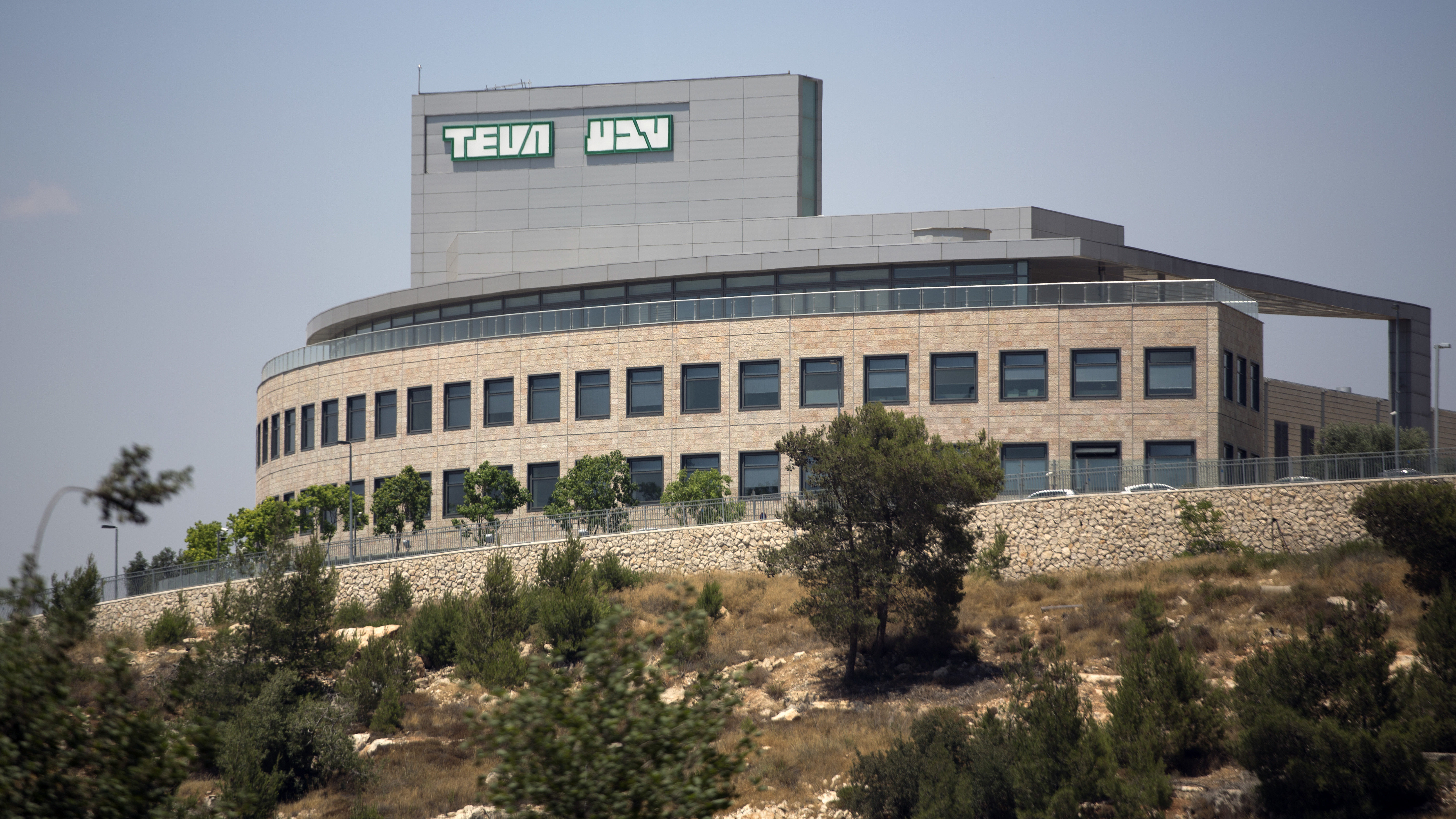 Teva's Freefall: Any Chance for a Soft Landing? (AUDIO INTERVIEW)