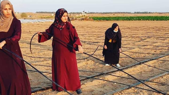 Women in Gaza Determined to Overcome Economic, Social Challenges