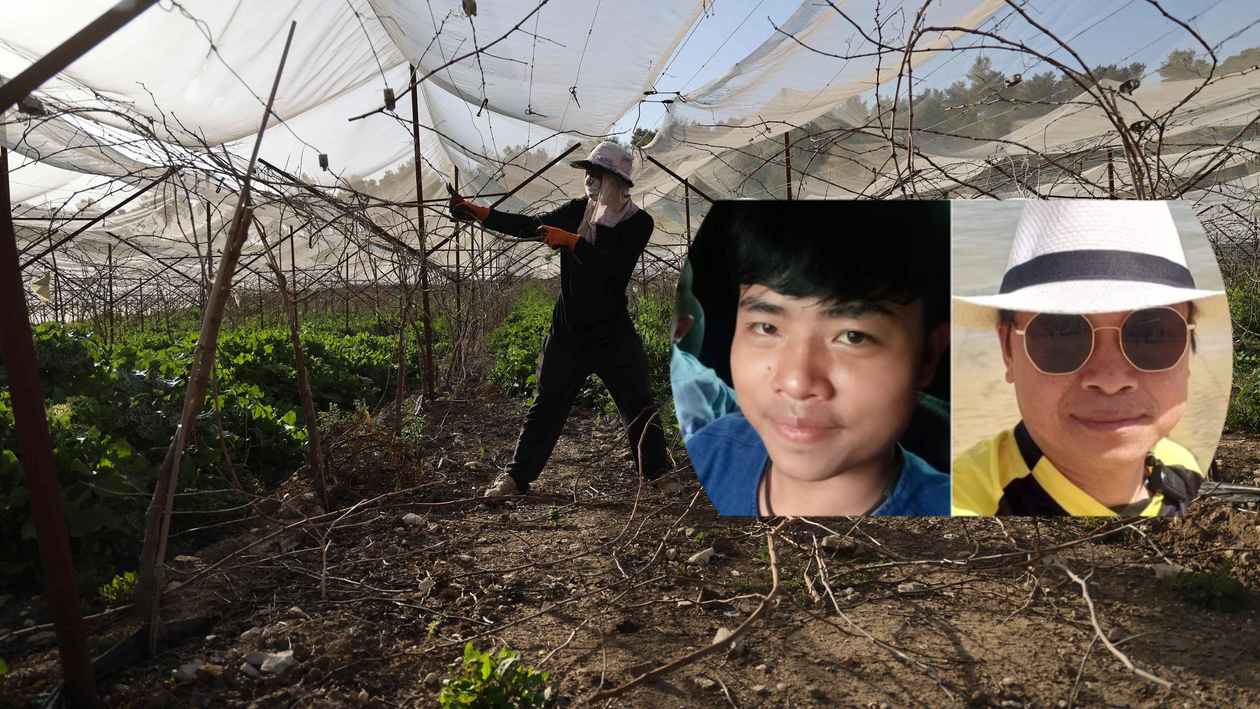 Thai Farmworkers Among Most Vulnerable in Israel to Hamas Rocket Fire